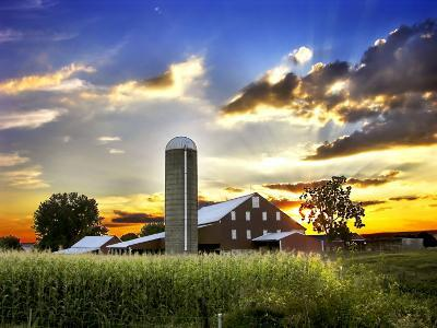 Silo, Barn, and Cornfield of an American Farm Backlit at Sunset-White & Petteway-Photographic Print