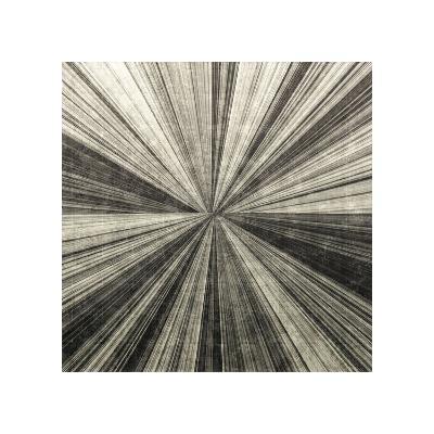 Silver Burst-Mali Nave-Giclee Print