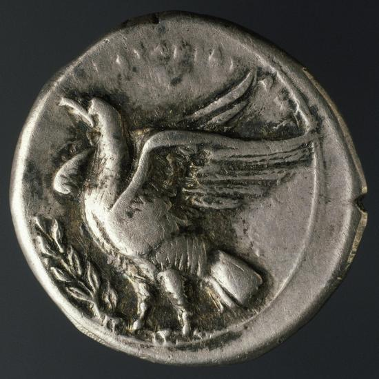 Silver Coin with Bird, Minted in Crotone, Verso, Ancient Greek Coins Giclee  Print by | Art com