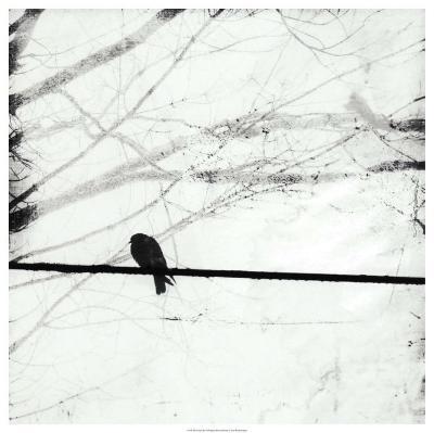 Silver Days II-Ingrid Blixt-Art Print
