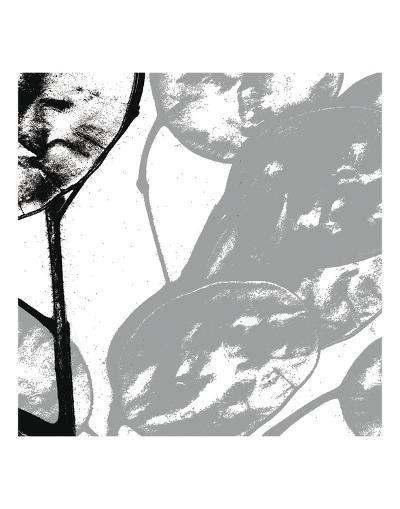 Silver Dollars VI-Erin Clark-Art Print