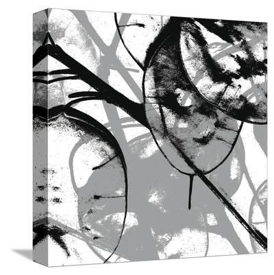 Silver Dollars VIII-Erin Clark-Stretched Canvas Print