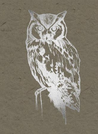 https://imgc.artprintimages.com/img/print/silver-foil-owl-i-on-banana-clay_u-l-f97by50.jpg?p=0