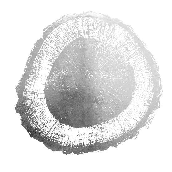 Silver Foil Tree Ring II-Vision Studio-Art Print
