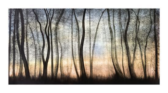 Silver Forest-Graham Reynolds-Giclee Print