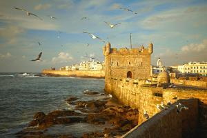 Essaouira Fortress, Morocco, Africa by silver-john
