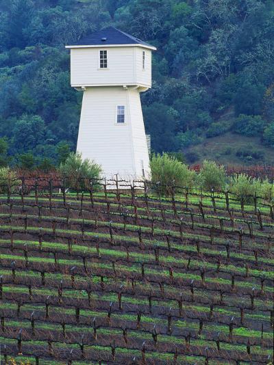 Silver Oak Cellars, Alexander Valley Wine Country, California-John Alves-Photographic Print