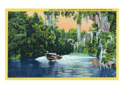 https://imgc.artprintimages.com/img/print/silver-springs-florida-view-of-a-speedboat-cruising-the-silver-river-and-jungle_u-l-q1gocns0.jpg?p=0