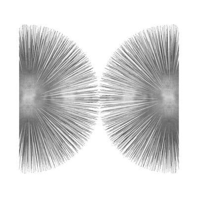 https://imgc.artprintimages.com/img/print/silver-sunburst-ii_u-l-f8nwwn0.jpg?p=0