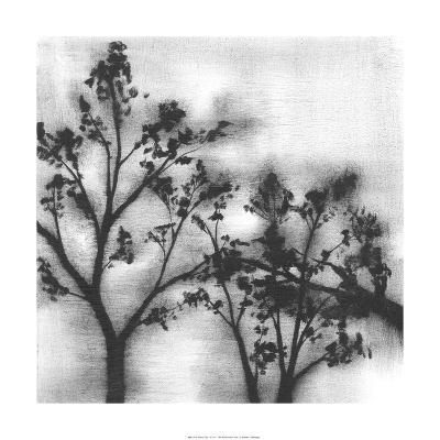 Silvery Trees I-Jennifer Goldberger-Limited Edition