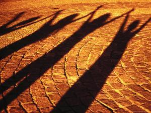 Shadows of People by Silvestre Machado