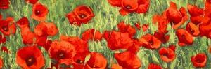 Poppy Field (detail) by Silvia Mei
