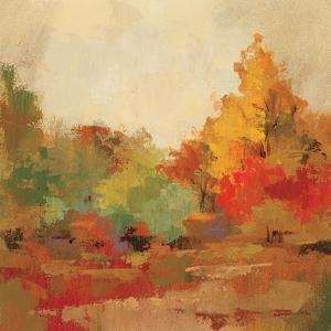 Fall Forest II by Silvia Vassileva