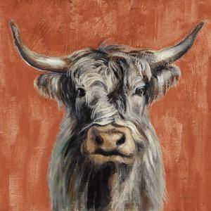 Highland Cow on Terracotta by Silvia Vassileva