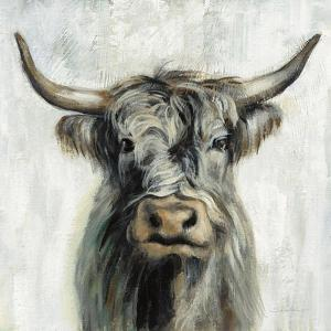 Highland Cow by Silvia Vassileva