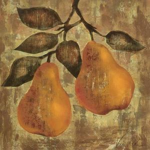 Pear by Silvia Vassileva