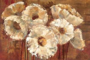 Waltzing Poppies by Silvia Vassileva