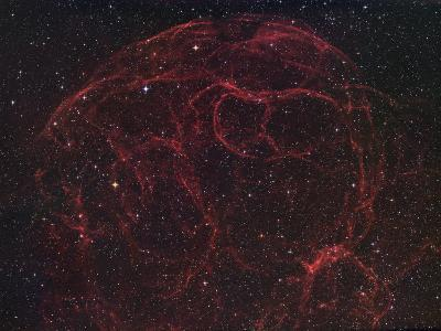 Simeis 147 (Sh2-240), Supernova Remnant in Taurus-Robert Gendler-Photographic Print