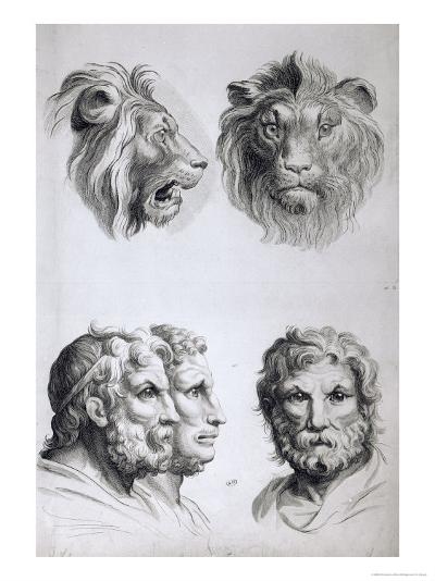 Similarities Between the Head of a Lion and a Man-Charles Le Brun-Giclee Print