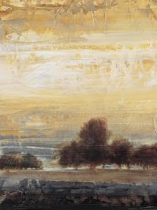 Restoration II by Simon Addyman