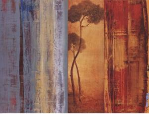 Shadows & Lines I by Simon Addyman