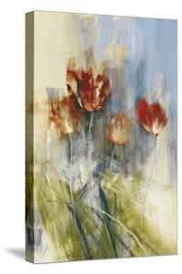 Tulips by Simon Addyman