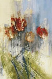 Tulips by Simon Addyman