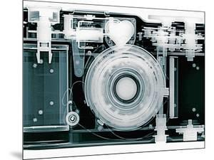 X-ray of Camera by Simon Marcus