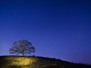 Burrow Hill, Somerset, at night by Simon Plant