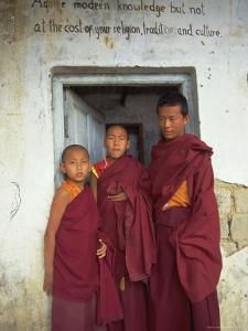 Portrait of Three Tibetan Buddhist Monks, Tashi Jong Monastery, Tibet, China by Simon Westcott