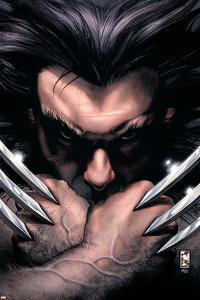Wolverine No.55 Cover: Wolverine by Simone Bianchi