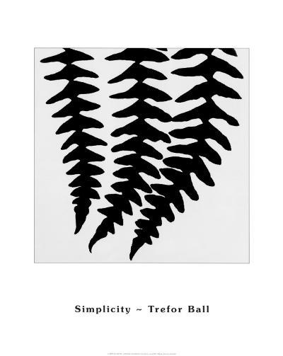 Simplicity-Trefor Ball-Art Print