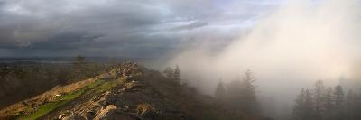 Simultaneous Sunlight and Fog on Spencer Butte in the Coast Ranges-Marli Miller-Photographic Print