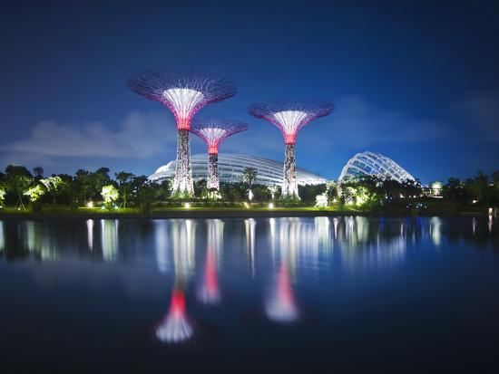 Singapore Garden by Bay Super-Trees-Tomatoskin-Photographic Print