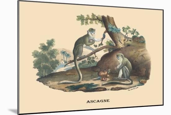 Singes Monkeys-E.f. Noel-Mounted Premium Giclee Print