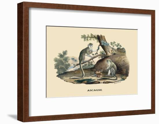 Singes Monkeys-E.f. Noel-Framed Art Print