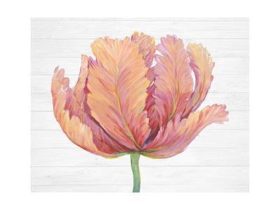 https://imgc.artprintimages.com/img/print/single-pink-bloom-i_u-l-q1e83070.jpg?p=0