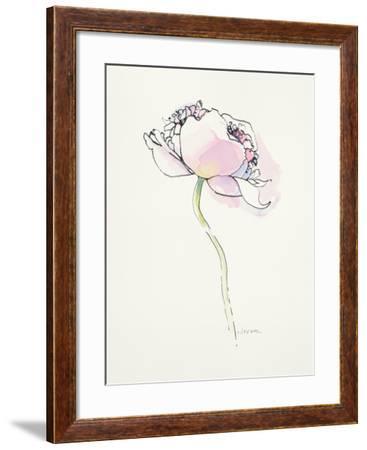 Single Pink Somniferum I-Shirley Novak-Framed Art Print