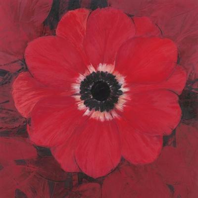 https://imgc.artprintimages.com/img/print/single-red-anemone_u-l-pgodbb0.jpg?artPerspective=n