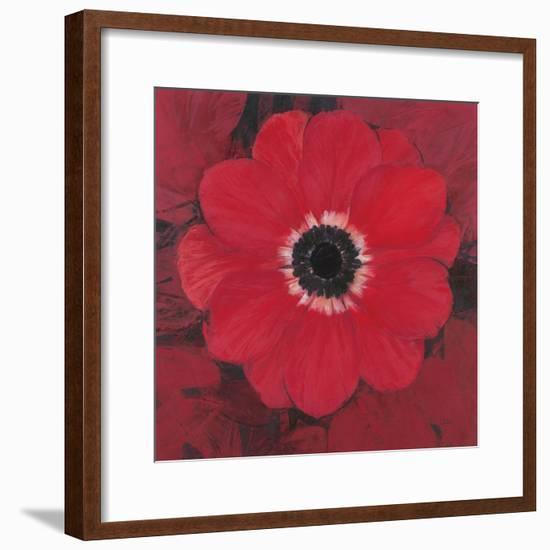 Single Red Anemone-Ivo-Framed Art Print