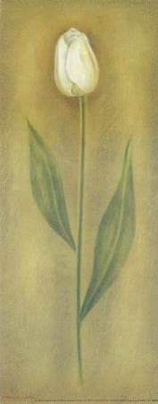 https://imgc.artprintimages.com/img/print/single-tulip-i_u-l-f4y3h40.jpg?p=0