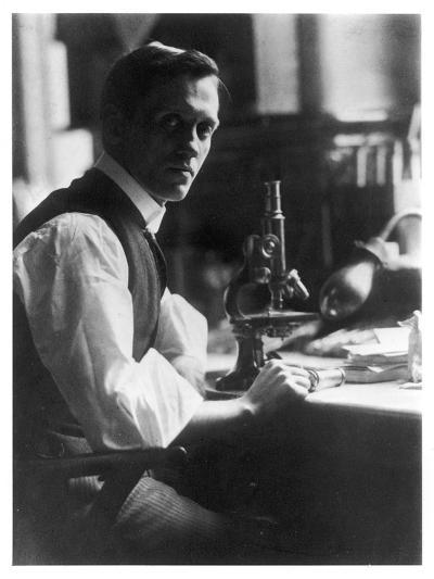 Sir Alexander Fleming - Scottish Bacteriologist at His Desk with His Microscope--Photographic Print