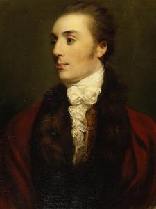 James Hare, M.P. by Sir Joshua Reynolds