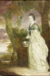 Portrait of Mrs Elizabeth Riddell, 1763 by Sir Joshua Reynolds