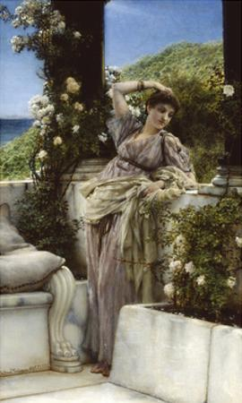 Thou Rose Of All Roses by Sir Lawrence Alma-Tadema