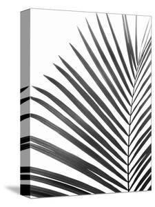 Palm Leaf by Sisi and Seb