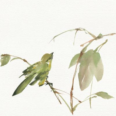 Sisken-Chris Paschke-Art Print