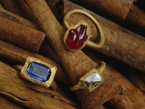 Cinnamon Bark Shows off Rings of Ruby, Diamond and Sapphire Found in the Wreckage by Sisse Brimberg