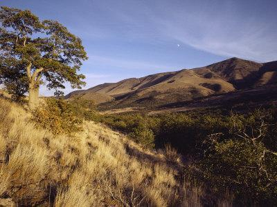 Scenic View of the Yakima Valley Landscape