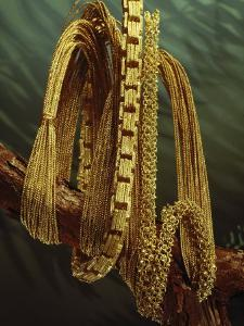 Three Restored Chains Drape a Branch by Sisse Brimberg